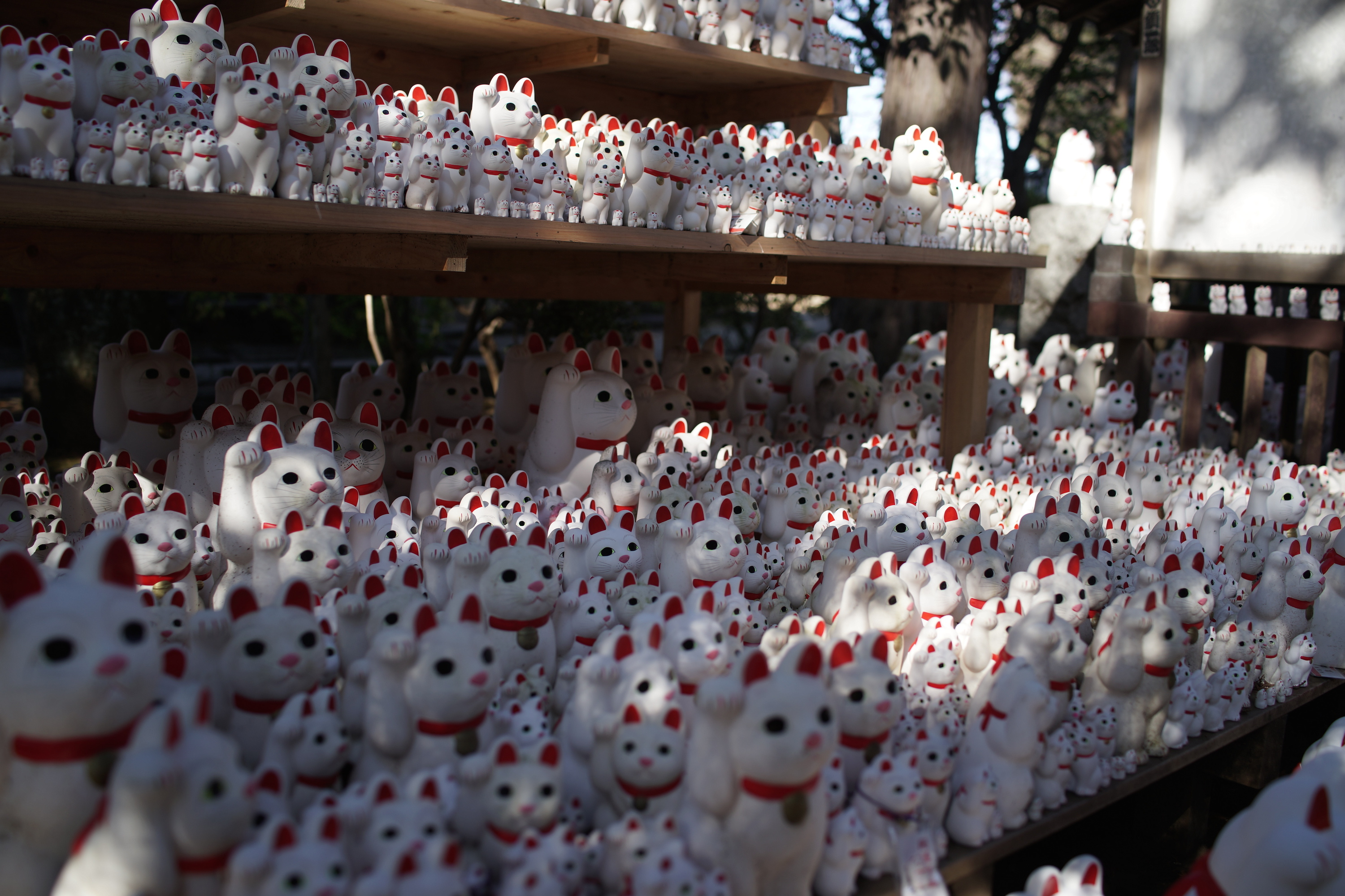 The Lucky Cat Temple